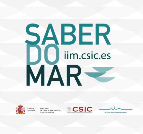 logo saber do mar_insta_p