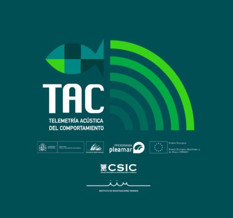 logo_tac_web